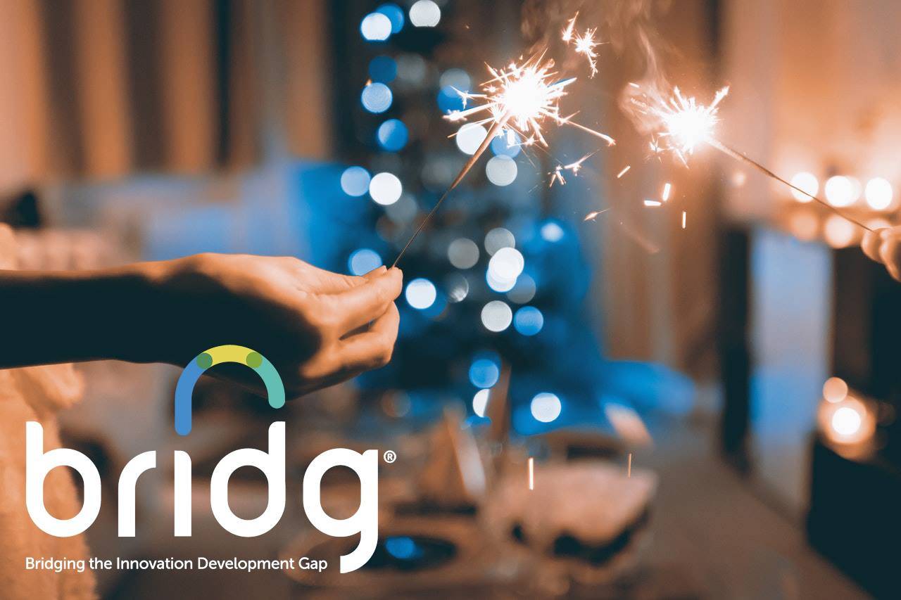 Looking Back as We Move Forward - BRIDG